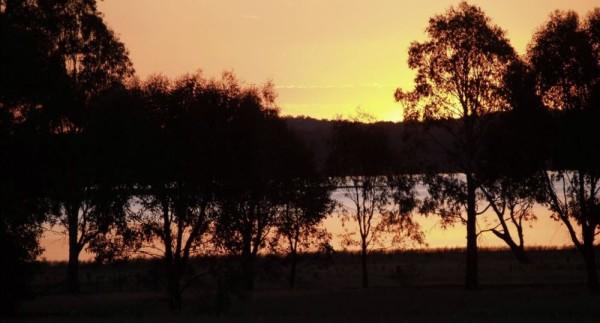 sunset_crop2